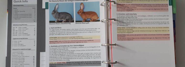 Каталог пород кроликов 2018