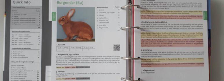 Каталог стандартов кроликов 2018