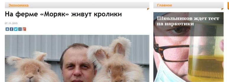 «Моряк» живут кролики