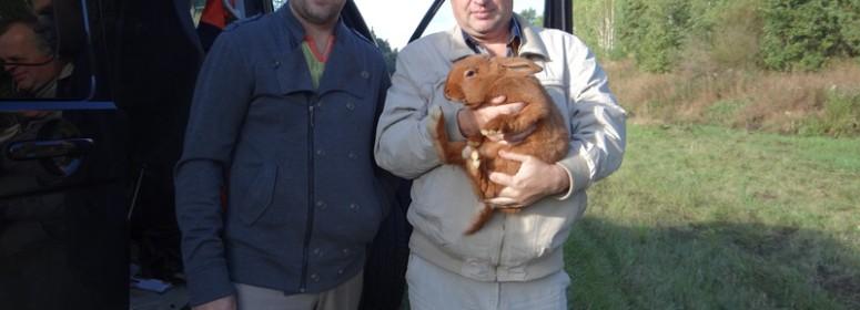 Заводчик кроликов