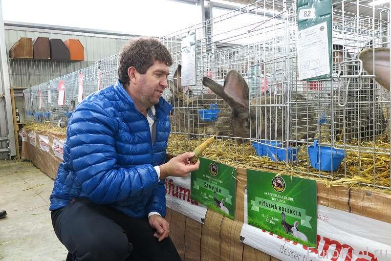 Марк Йозеф с кроликом бельгийский великан