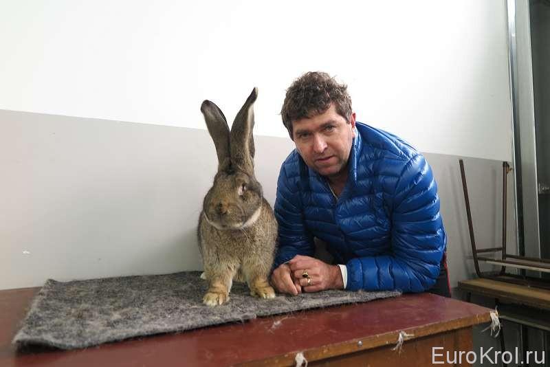 Марко с кроликом победителем