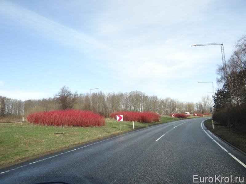 На авто в Данию