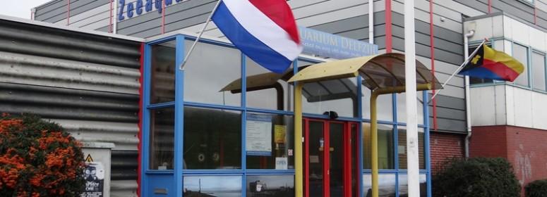 Музей аквариум Делфзейл