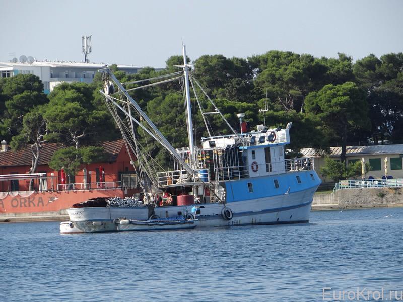Рыбаки в Хорватии
