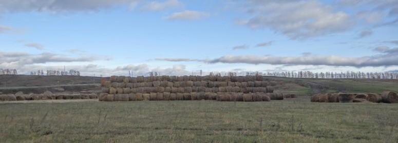 Складирование сена