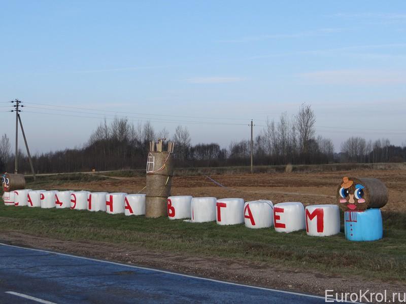 Продажа сена в Беларуси
