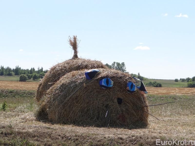 Изделия из сена на полях