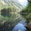 Зелёное озеро в Австрии