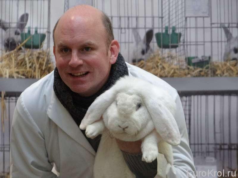 На выставке кроликов