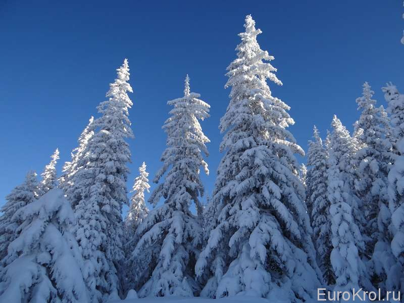 Южный Урал зима
