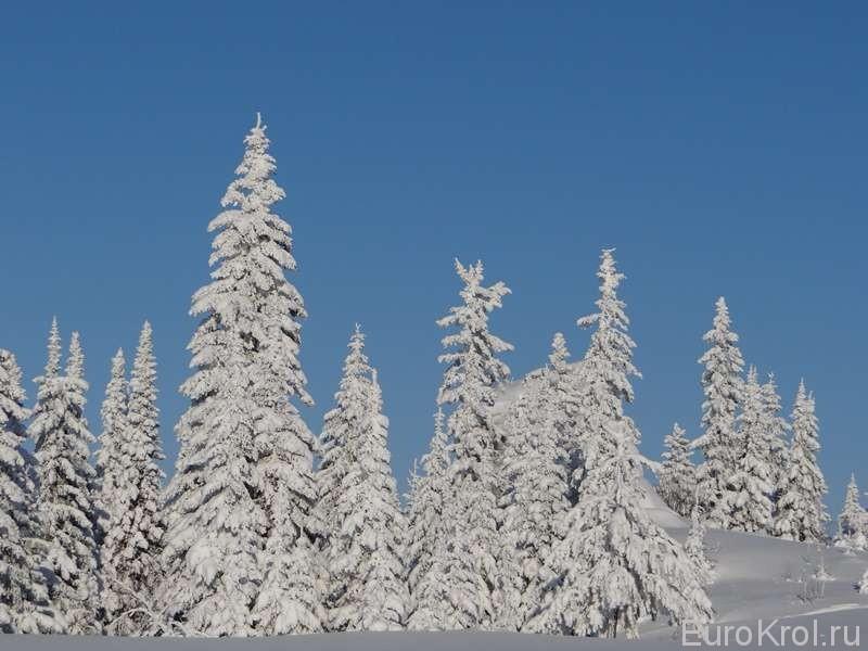 Южный Урал зимний пейзаж