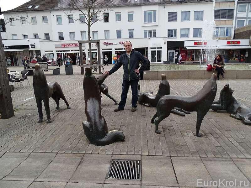 Волки в Вольфсбурге