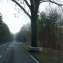 Дорога в Шпреевальд