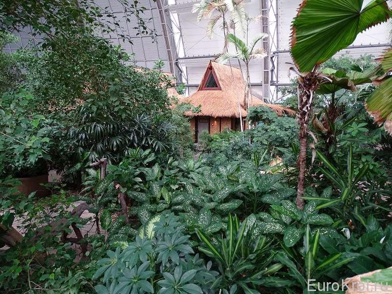 Тропическая деревня