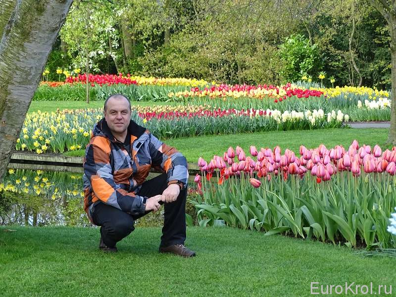 Парк цветов в Голландии