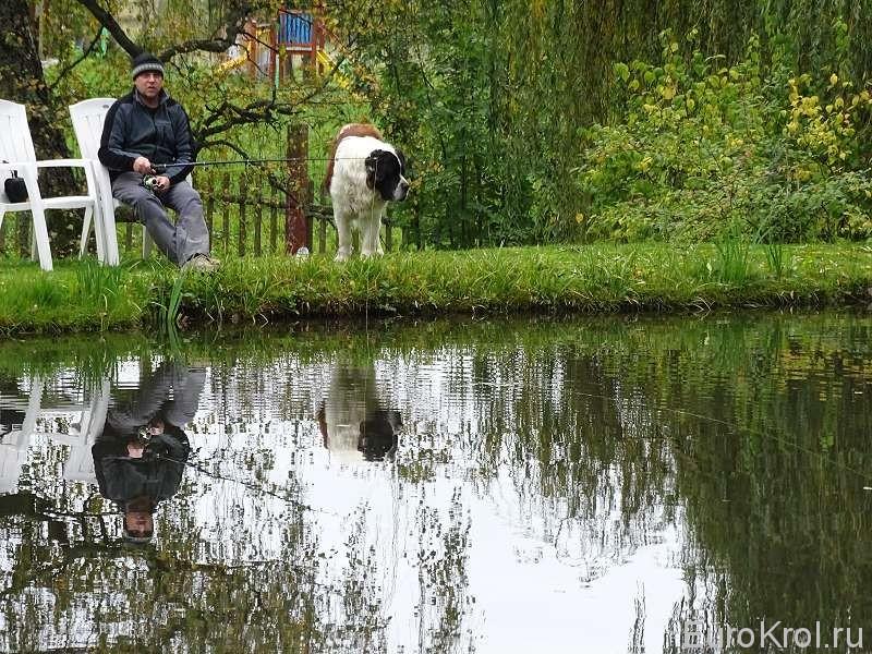 Рыбалка Стоков