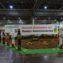 Выставка Бундесшоу